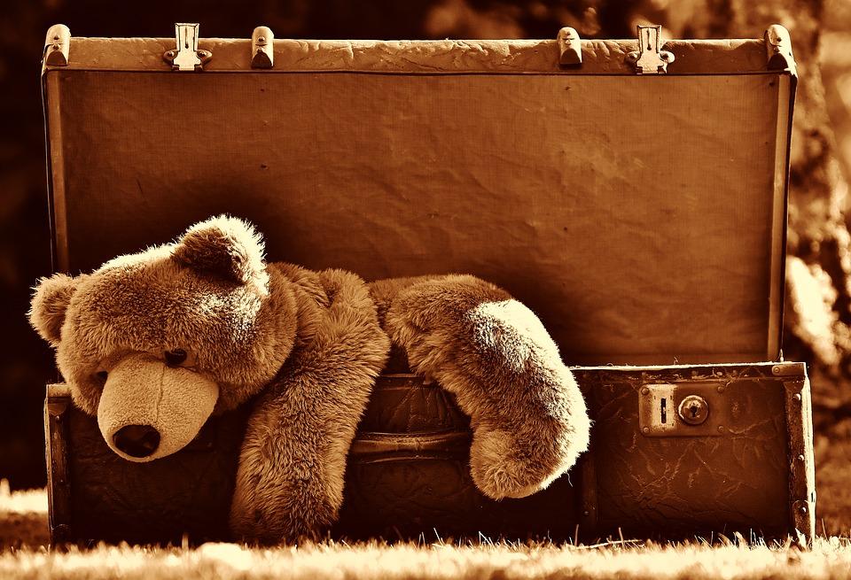 Medvěd na hraní