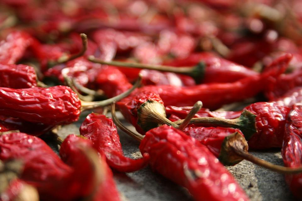 sušené papričky chilli