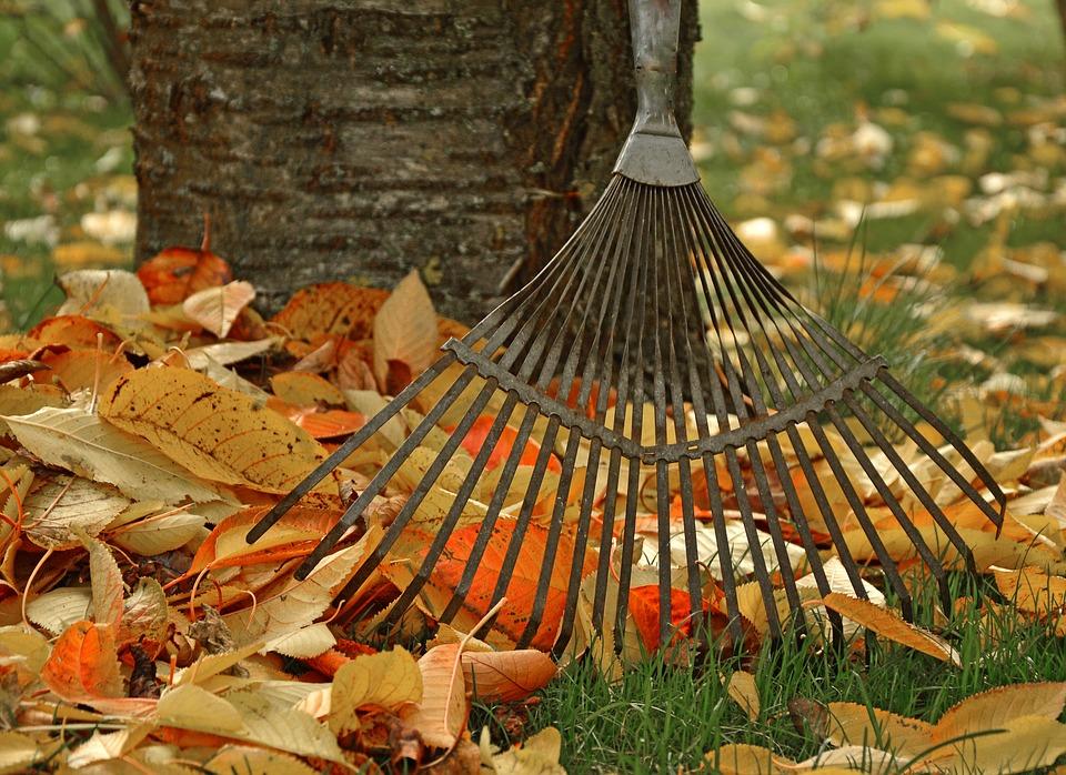 Úprava zahrady před podzimem