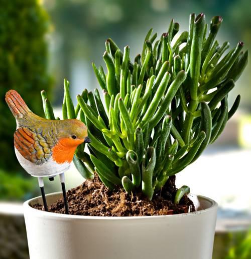 Hlídač zalévání rostlin