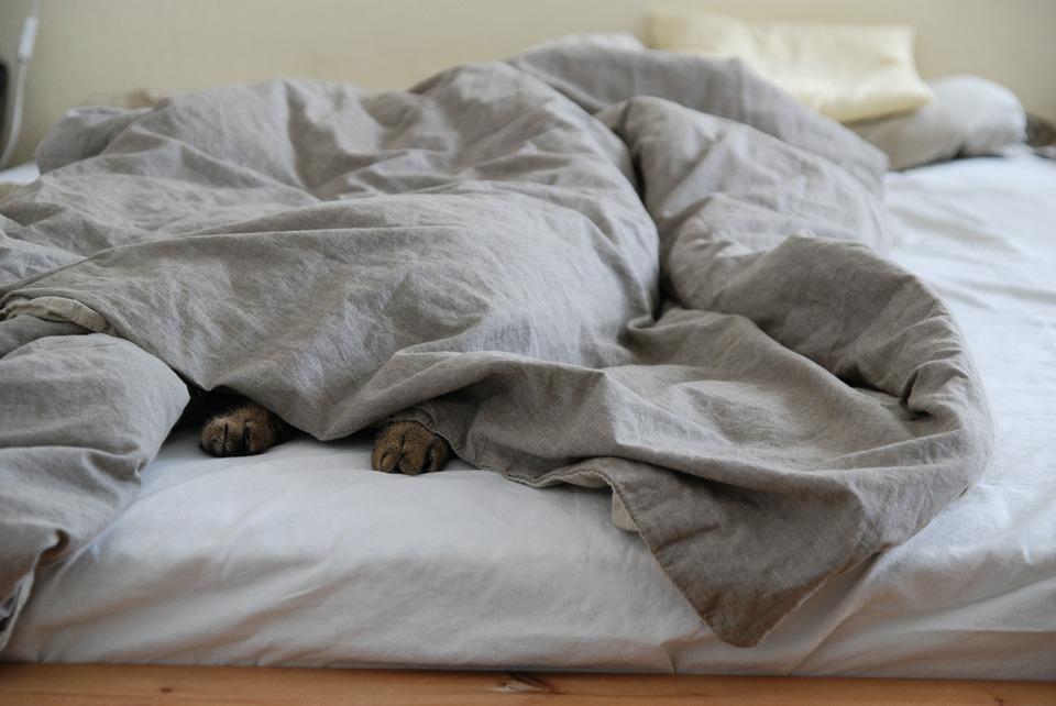 Jak se vybírá matrace