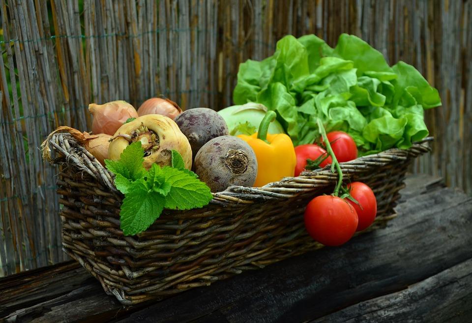 Naučte se pěstovat zeleninu v bytě
