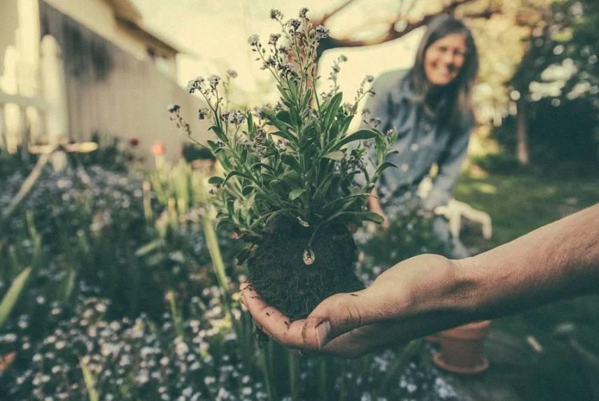 Ekologická domácnost a vlastní zahrada