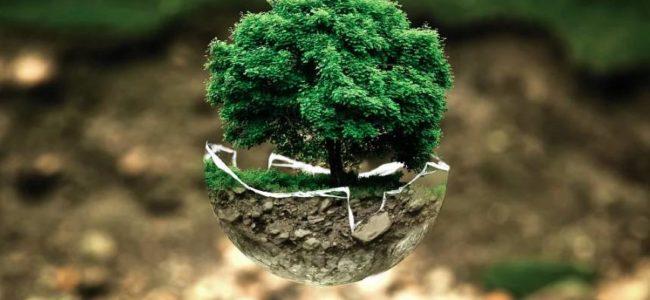 Jak na ekologickou domácnost
