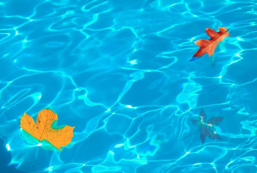 Údržba bazénu by se neměla podceňovat