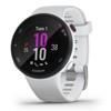Fitness hodinky Garmin Forerunner 45S Optic